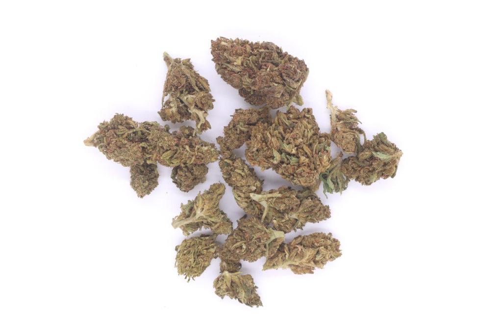 buy hemp flower