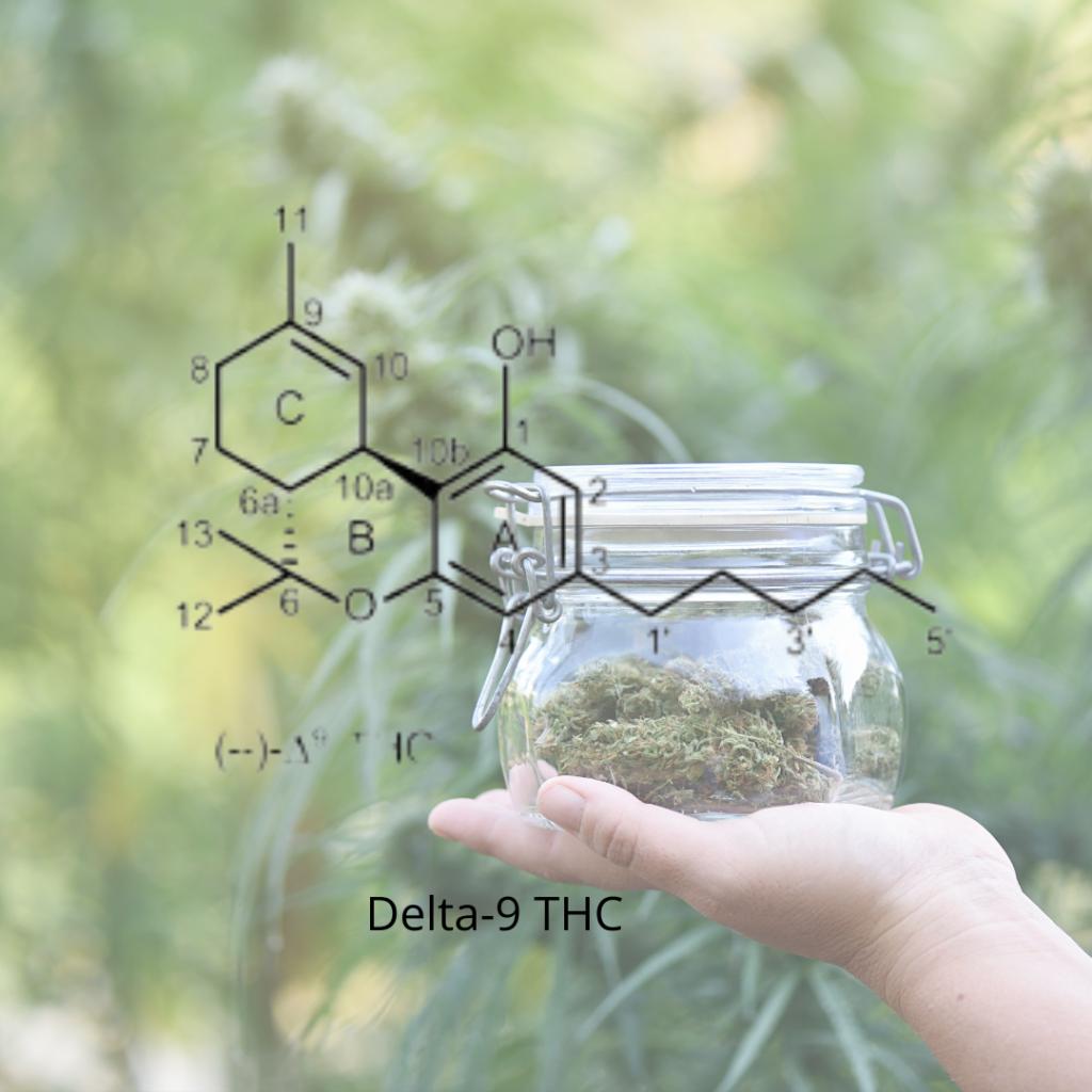 delta-9 THC